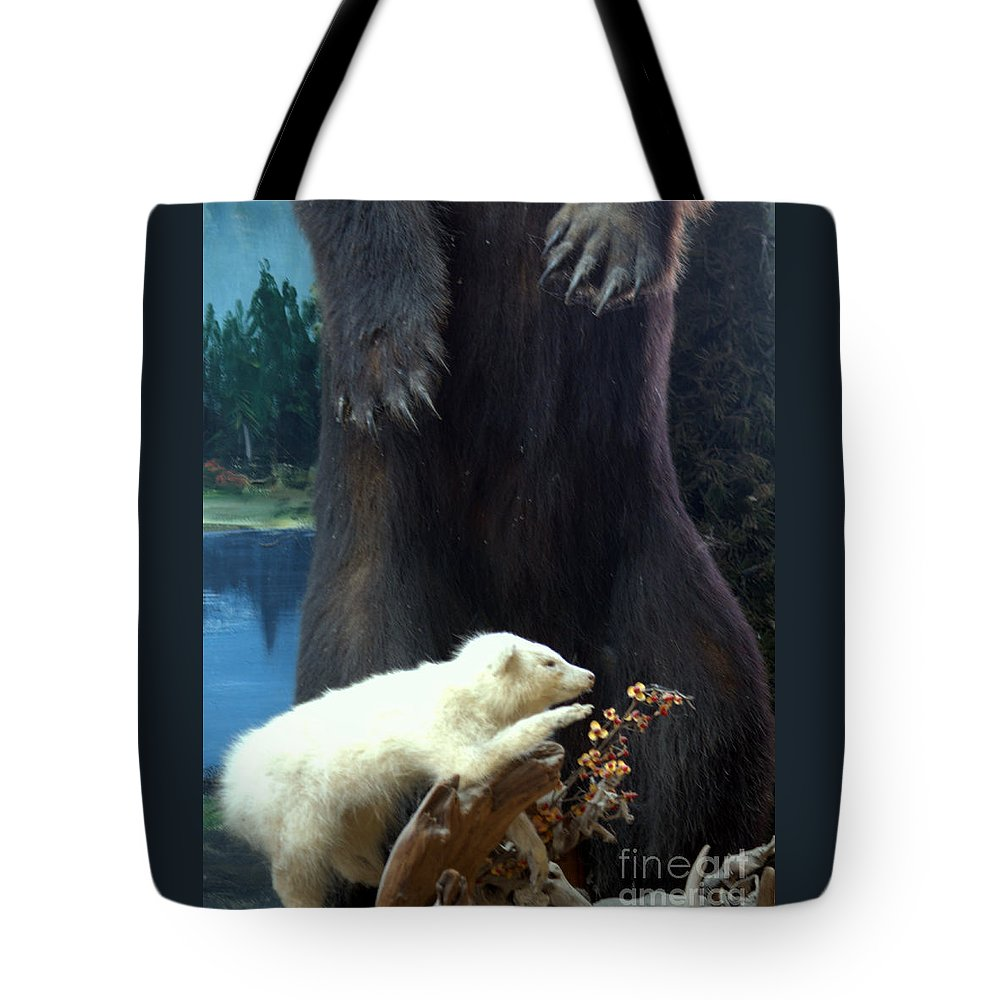 Opossum Tote Bag featuring the photograph Arkey Was Far Sighted Too by Joe Jake Pratt