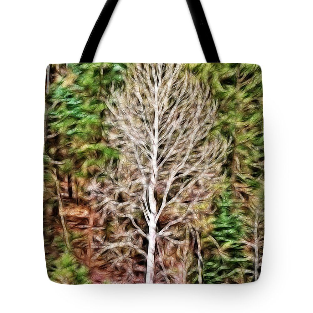Aspen Tote Bag featuring the photograph Aspen Tree On A Forest Road by Donna Greene