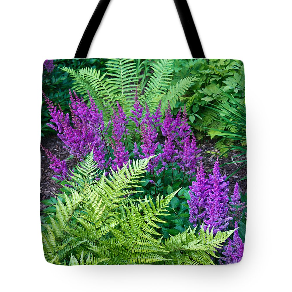 Feather Flower Tote Bag featuring the photograph Astilbe And Ferns by Douglas Barnett