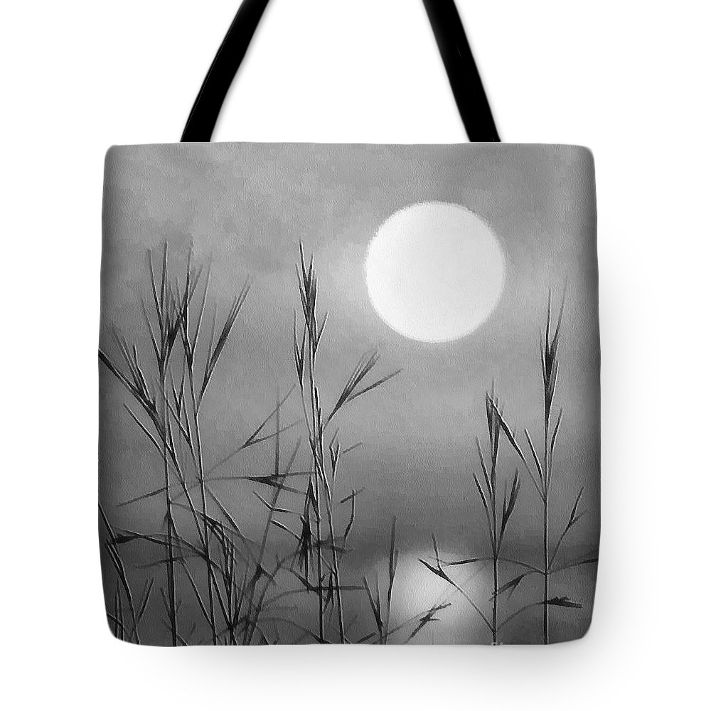 Full Moon Tote Bag featuring the photograph At The Full Moon by Dragica Micki Fortuna