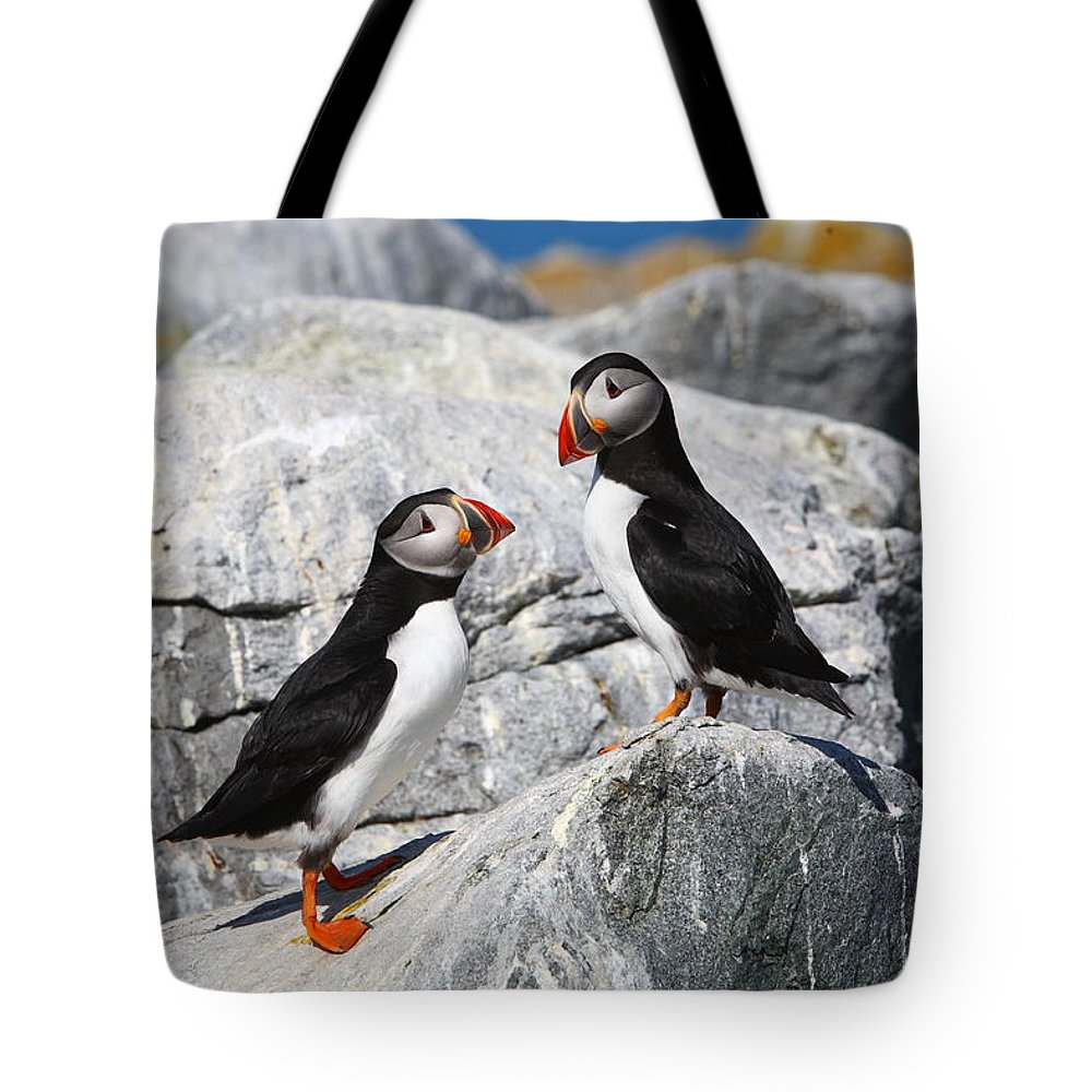 Puffin Tote Bag featuring the photograph Atlantic Puffins by Bruce J Robinson