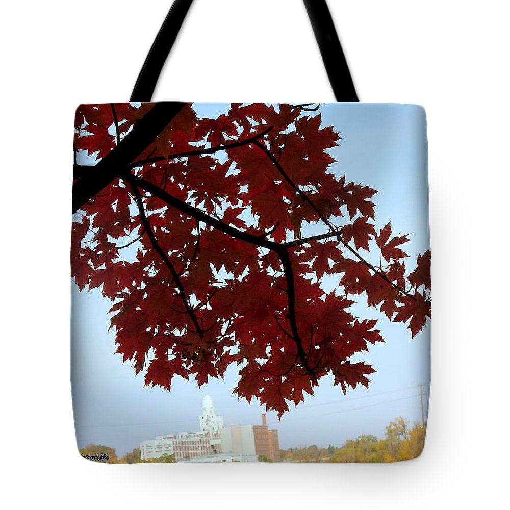 Fall Color Tote Bag featuring the photograph Autumn Afternoon In Peterborough by Lingfai Leung