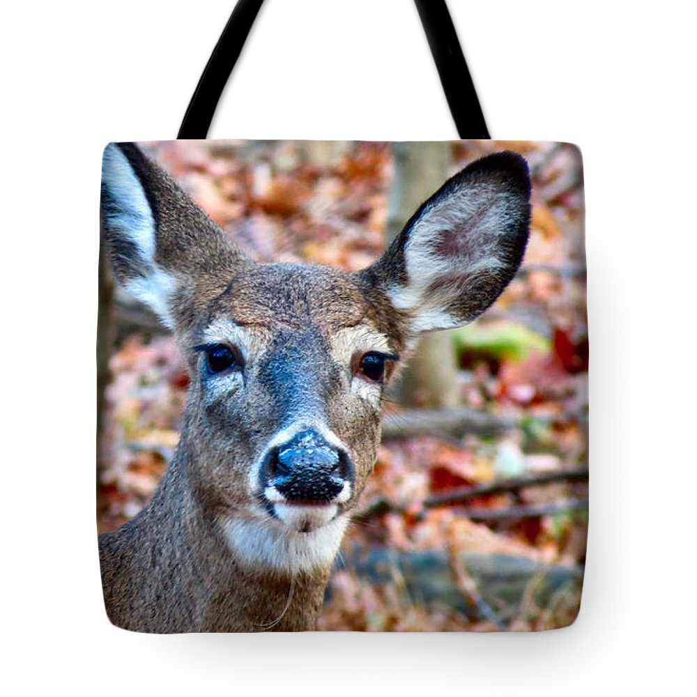 Deer Tote Bag featuring the photograph Autumn Buck by Art Dingo