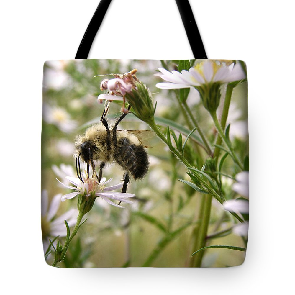 Bee Tote Bag featuring the photograph Autumn Bumblebee And Flowers by Angie Rea