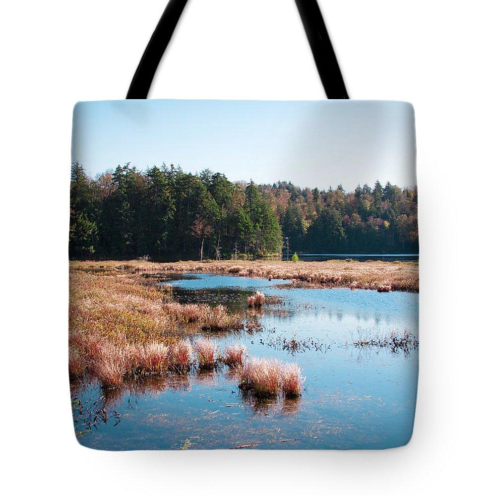 The Adirondacks Tote Bag featuring the photograph Adirondack Lake 2 by David Patterson