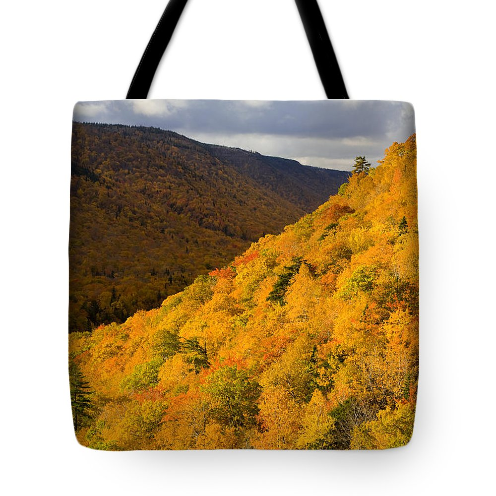 Autumn Colors Tote Bag featuring the photograph Autumn Colours At North Mountain by John Sylvester