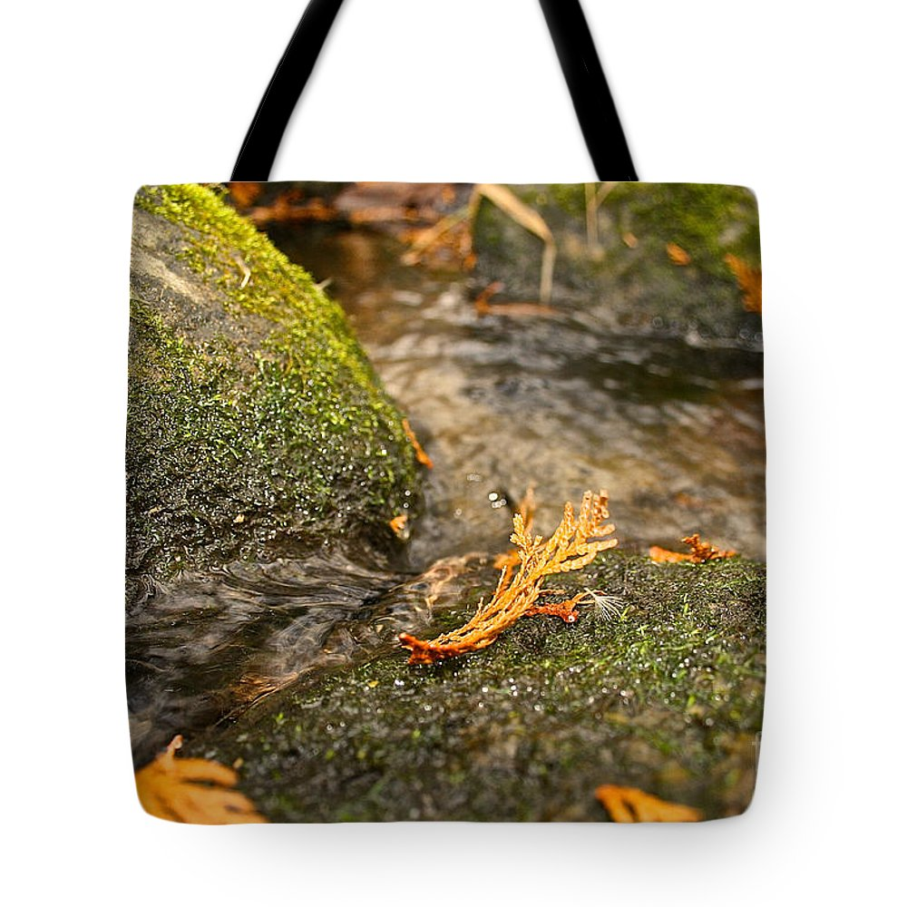 Outdoors Tote Bag featuring the photograph Autumn Creek by Susan Herber