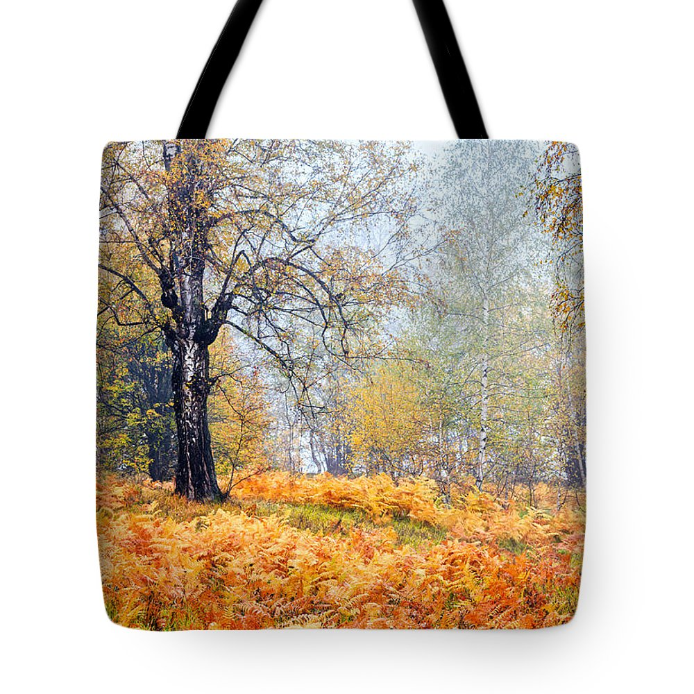 Balkan Mountains Tote Bag featuring the photograph Autumn Dreams by Evgeni Dinev