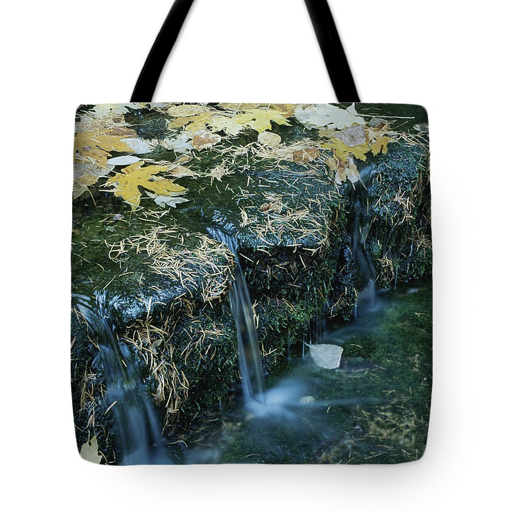 Geography Tote Bag featuring the photograph Autumn Foliage Floats Upon The Surface by Marc Moritsch