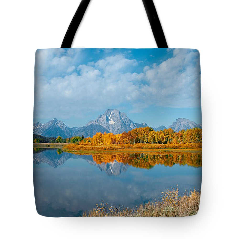 Sandra Bronstein Tote Bag featuring the photograph Autumn In Grand Teton by Sandra Bronstein