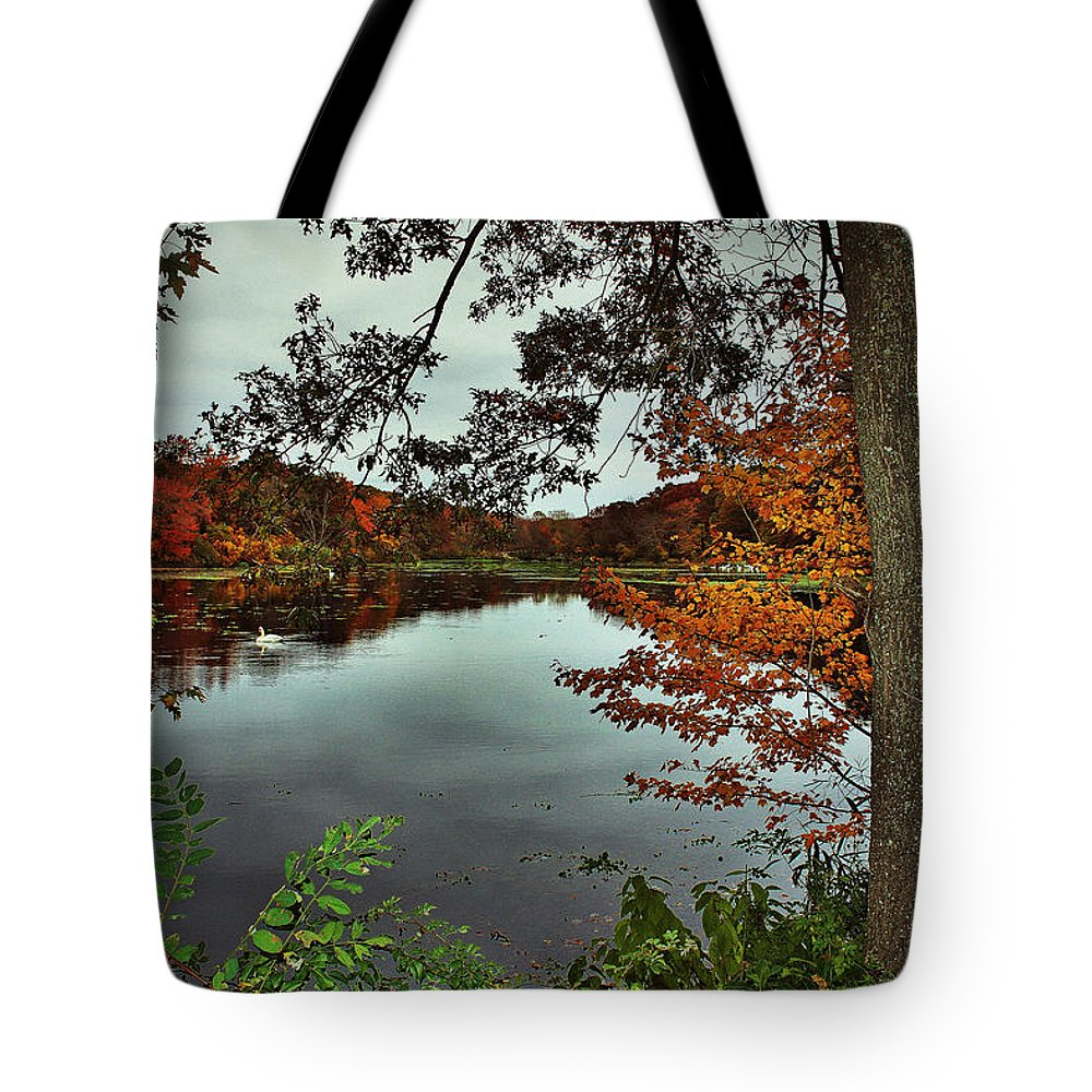 Landscape Tote Bag featuring the photograph Autumn Landscape by Mikki Cucuzzo