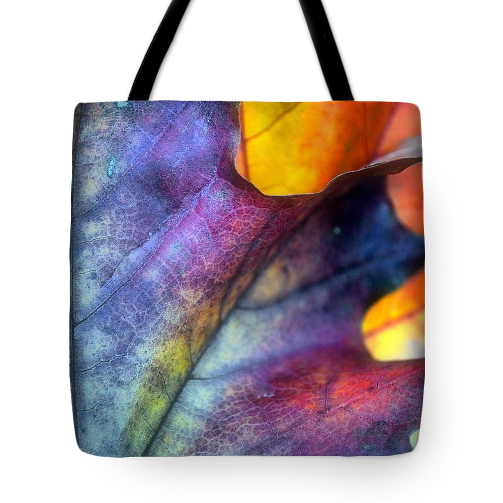 Leaf Tote Bag featuring the photograph Autumn Leaf Abstract 2 by Tara Turner