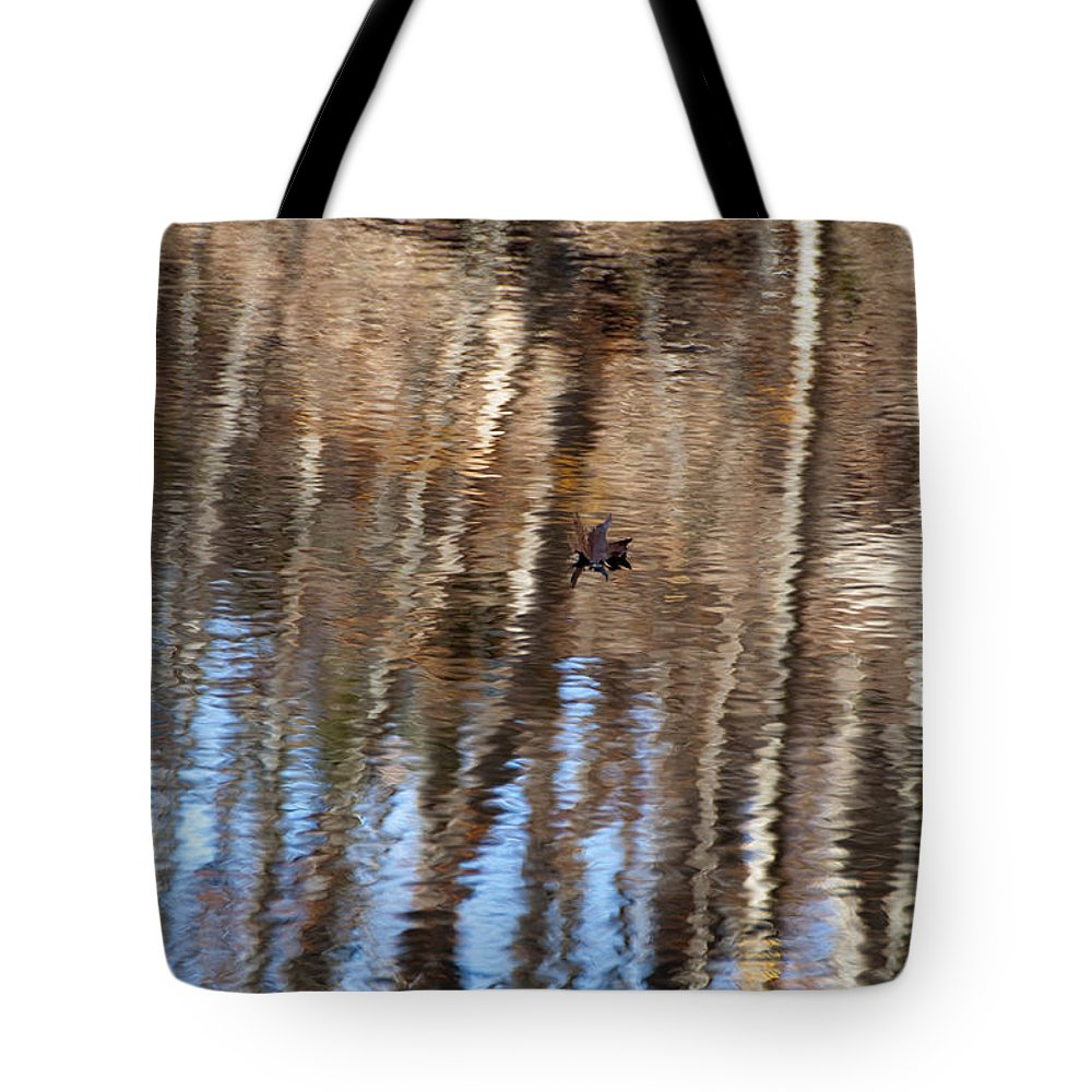 Photography Tote Bag featuring the photograph Autumn Leaf by Steven Natanson