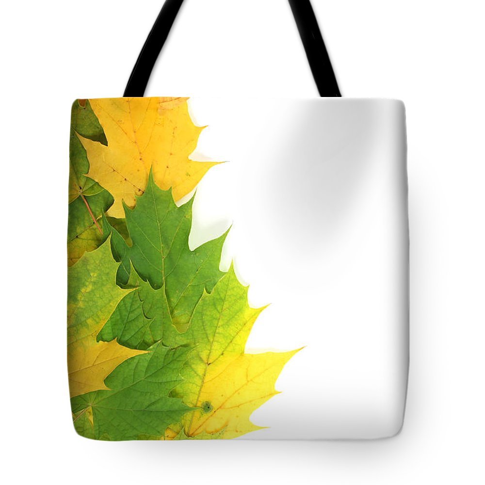 Autumn Tote Bag featuring the photograph Autumn Leaves On Edge by Simon Bratt Photography LRPS