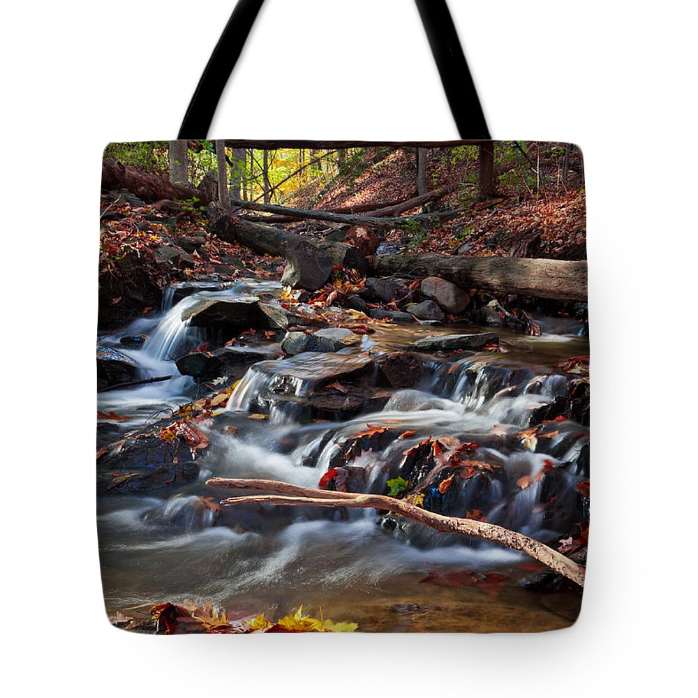 Moving Tote Bag featuring the photograph Autumn Moving Water With Foliage by Jiayin Ma