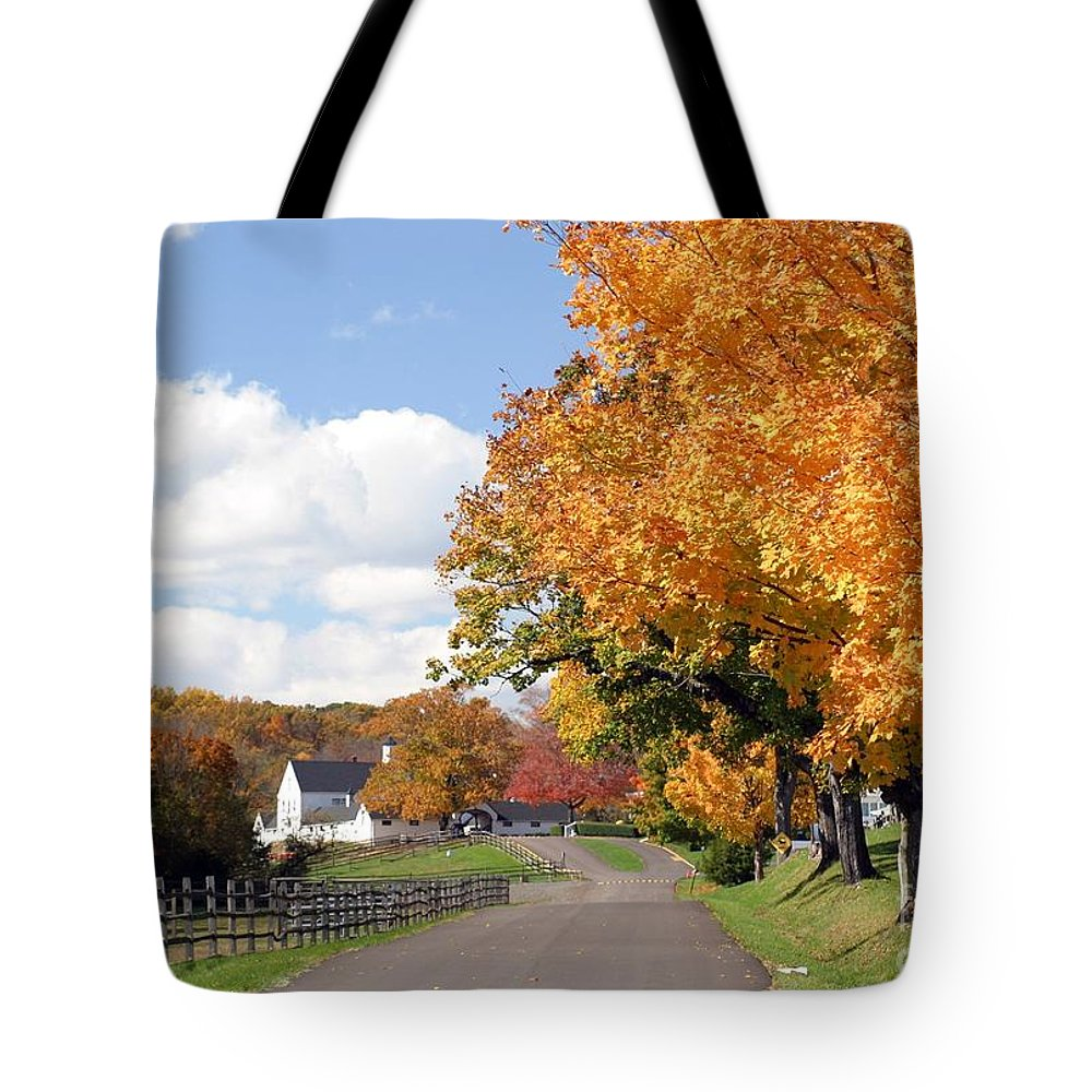 Autumn Tote Bag featuring the photograph Autumn Picture Postcard by Living Color Photography Lorraine Lynch