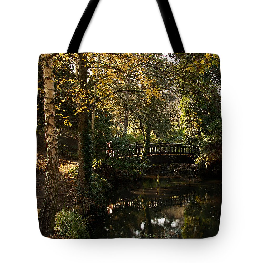 Sunlight Tote Bag featuring the photograph Autumn Reflections by Dawn OConnor