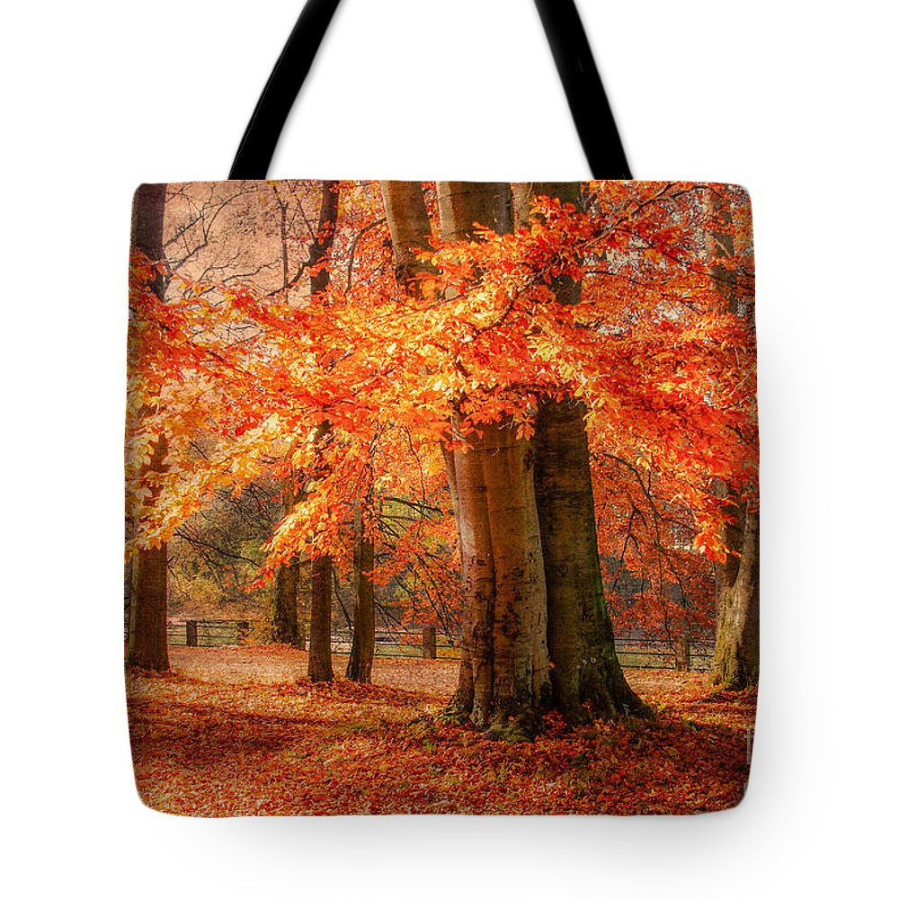 Autumn Tote Bag featuring the photograph autumn skirt I by Hannes Cmarits
