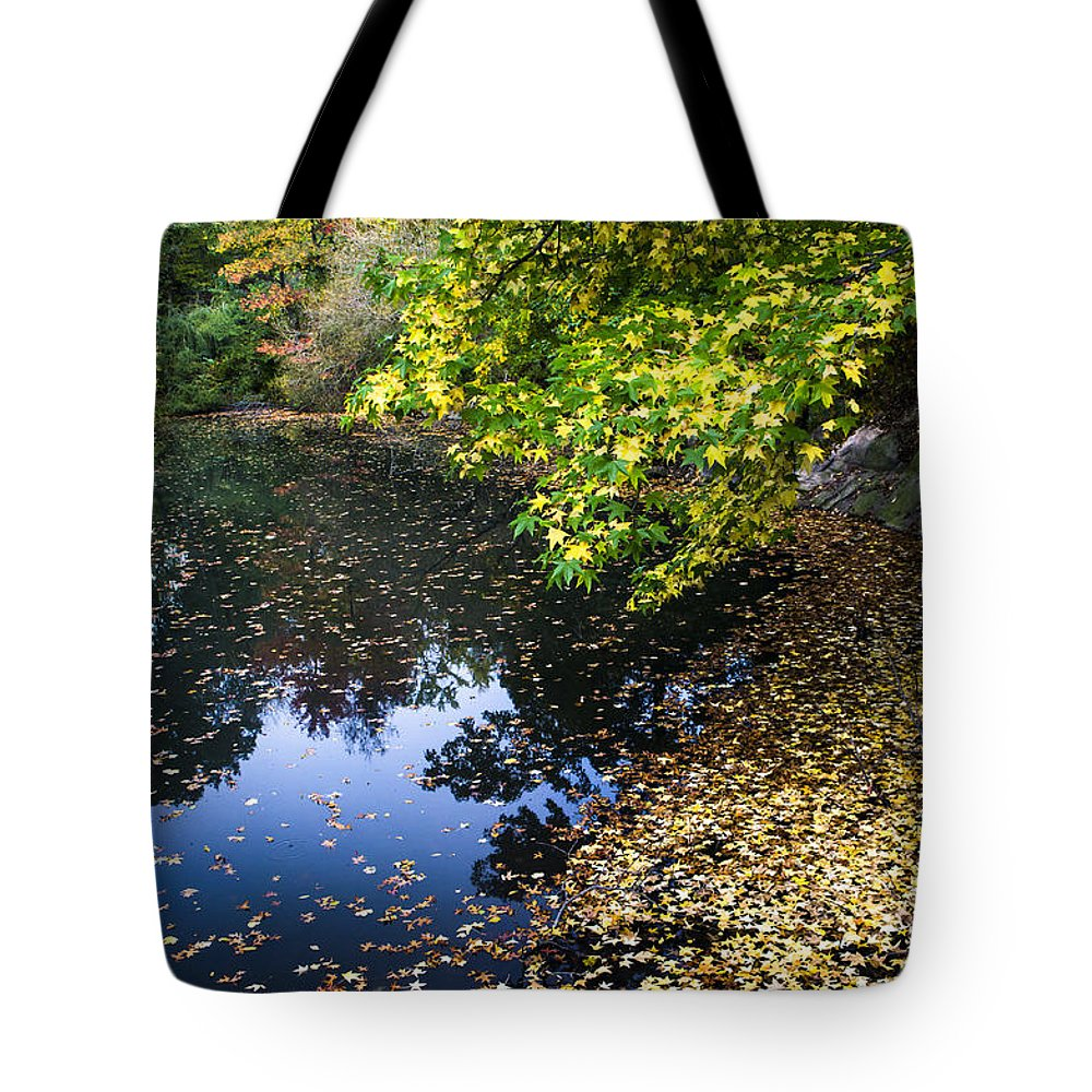 Central Park Autumn Tote Bag featuring the photograph Autumn Tree Colors In Central Park In New York City by Ellie Teramoto