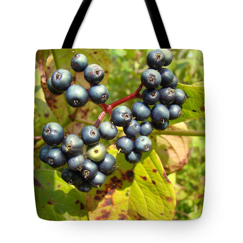 Autumn Tote Bag featuring the photograph Autumn Viburnum Berries Series #3 by Mother Nature