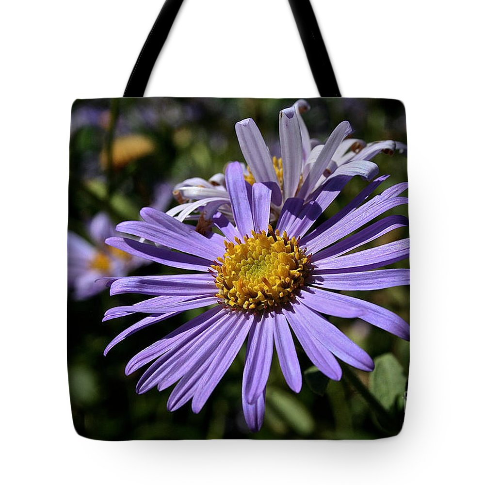 Flower Tote Bag featuring the photograph Autumn's Aster by Susan Herber