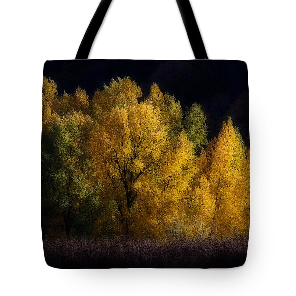 Autumn's Last Hurrah Tote Bag featuring the photograph Autumn's Last Hurrah by Wes and Dotty Weber