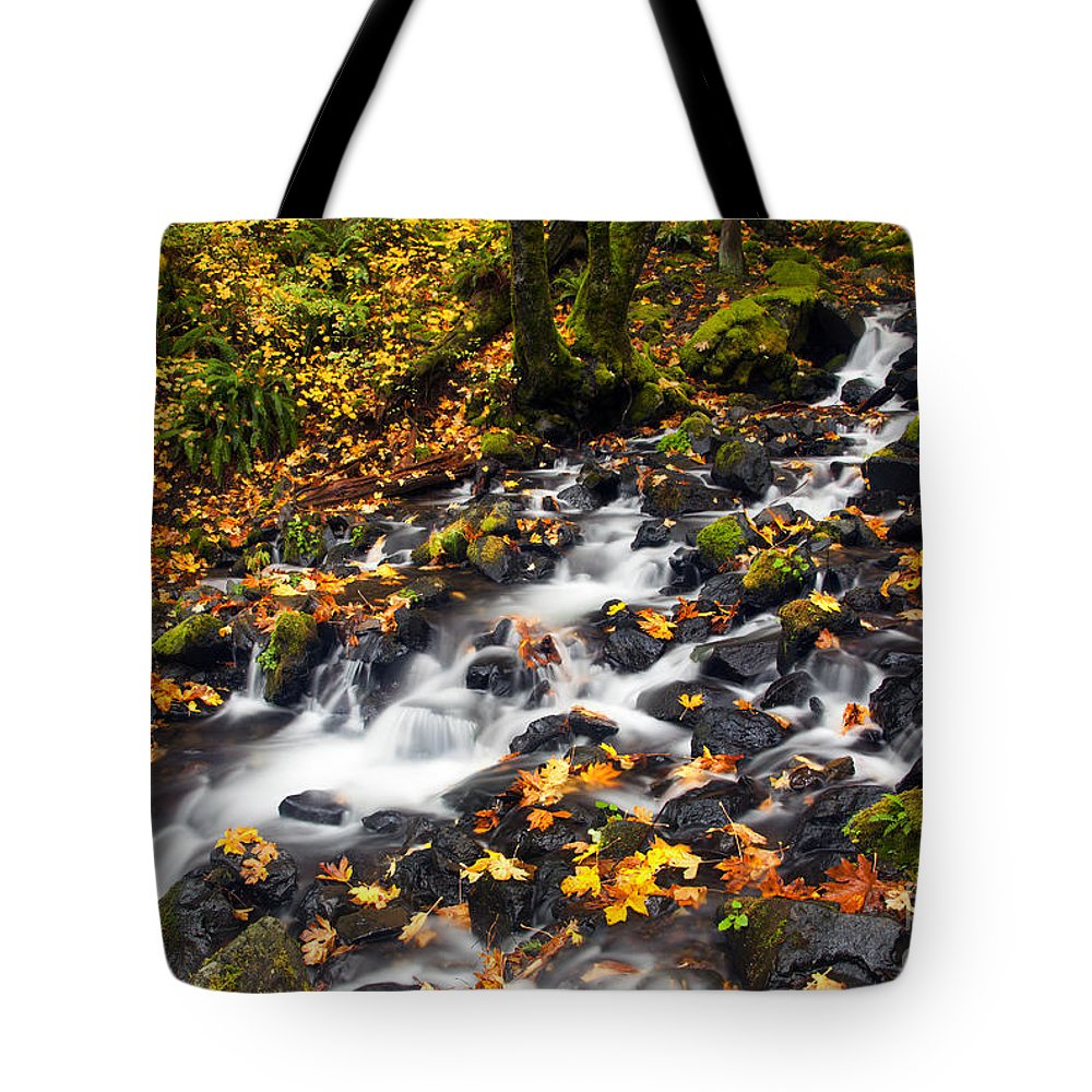 Autumn Tote Bag featuring the photograph Autumn's Staircase by Mike Dawson
