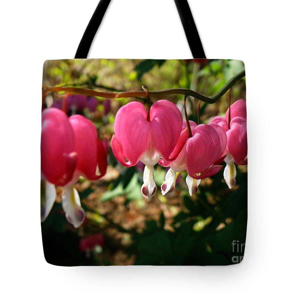 Bleeding Heart Tote Bag featuring the photograph B2n Bleeding Heart 3 by M Brandl
