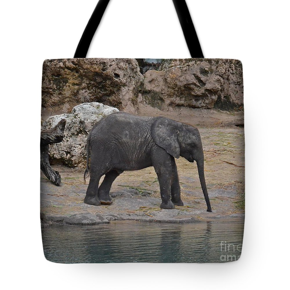 Elephant Tote Bag featuring the photograph Baby Elephant by Carol Bradley
