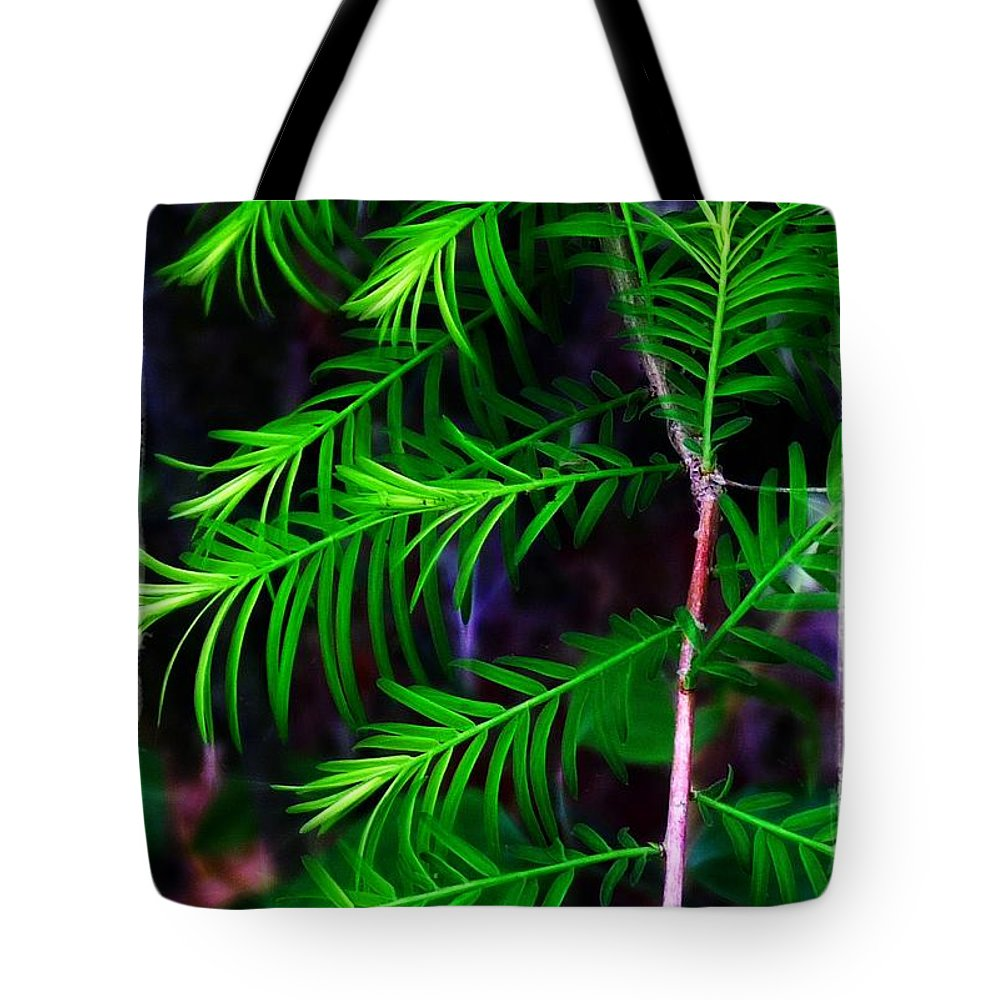 Baldcypress Tote Bag featuring the photograph Baldcypress by Judi Bagwell