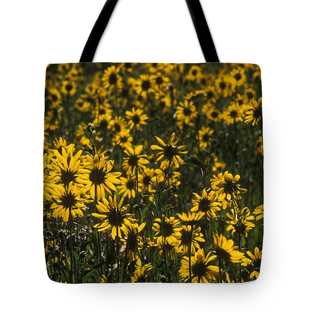 Bronstein Tote Bag featuring the photograph Balsamroot Field In Grand Teton by Sandra Bronstein