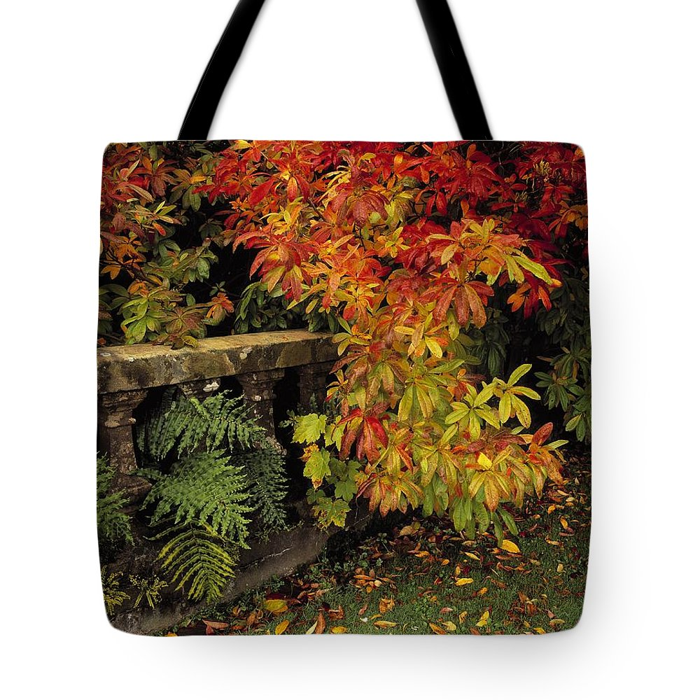 Castlewellan Tote Bag featuring the photograph Balustrades & Autumn Colours by The Irish Image Collection