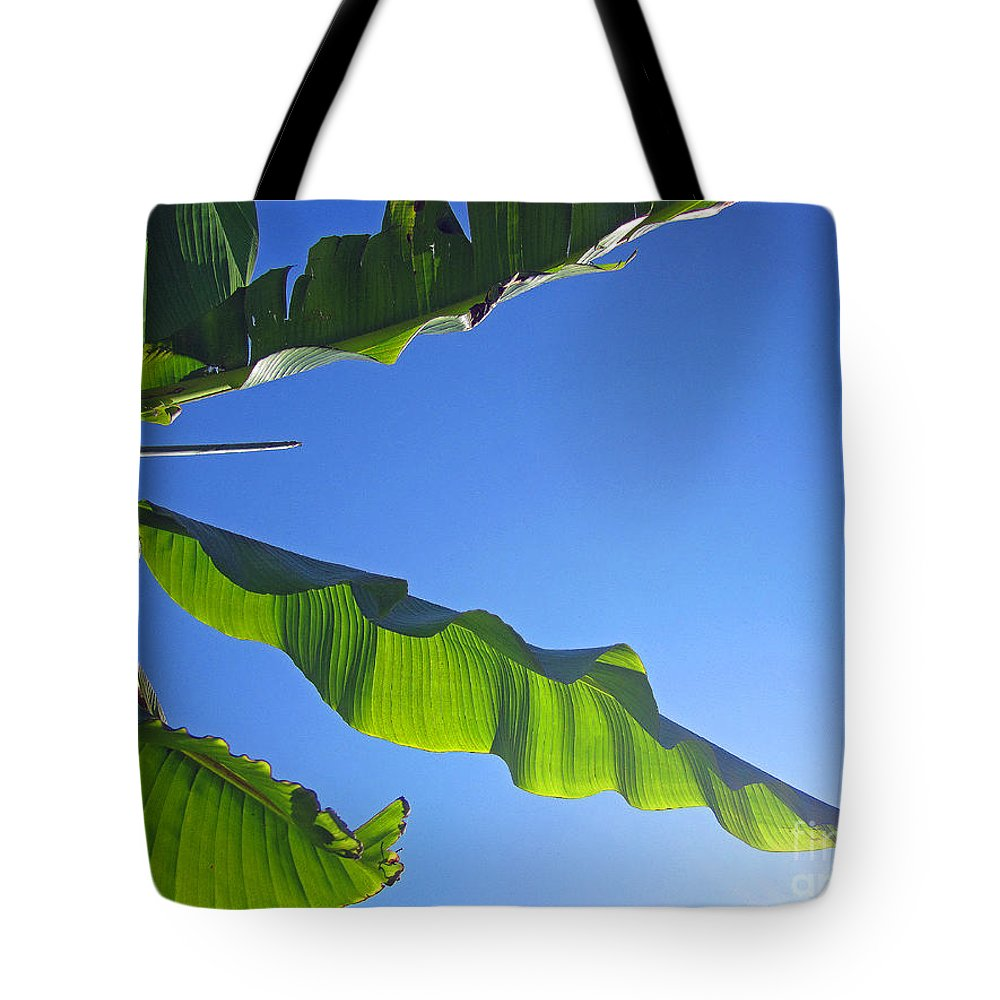 Banana Tote Bag featuring the photograph Banana Leaf In The Sky by Tracy Long