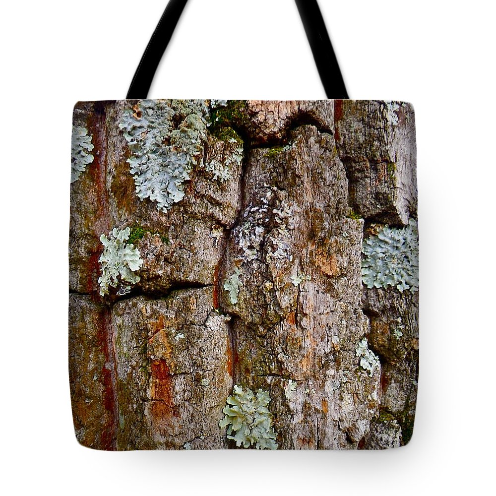 Tree Tote Bag featuring the photograph Bark At Me by Anna Ruzsan