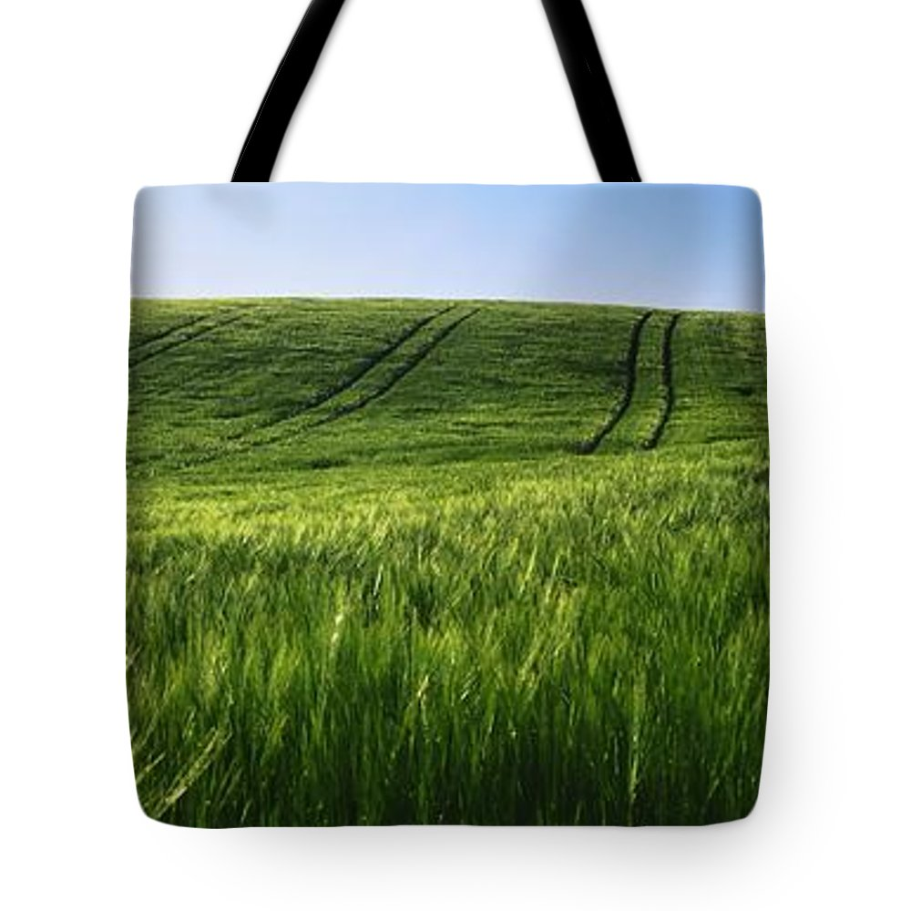 Barley Tote Bag featuring the photograph Barley, Co Down by The Irish Image Collection