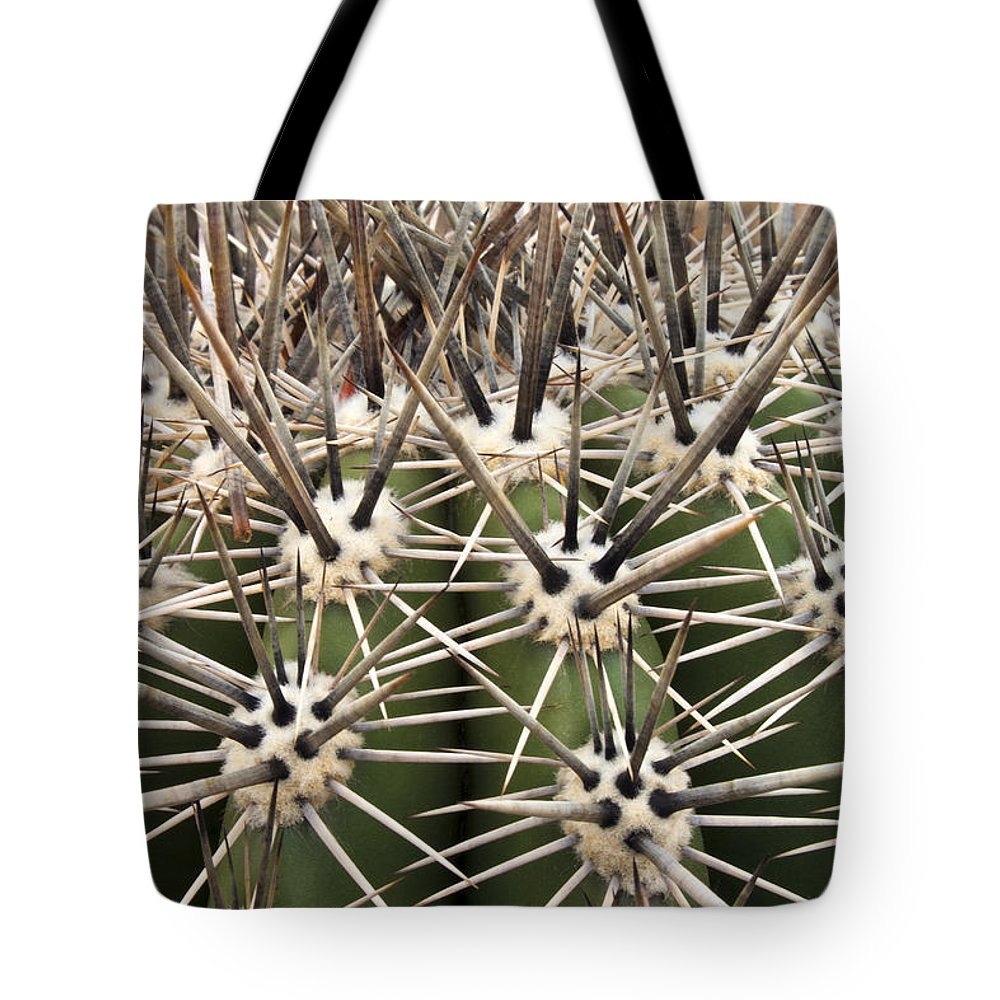 Arizona Tote Bag featuring the photograph Barrel Cactus Color by Barbara Northrup