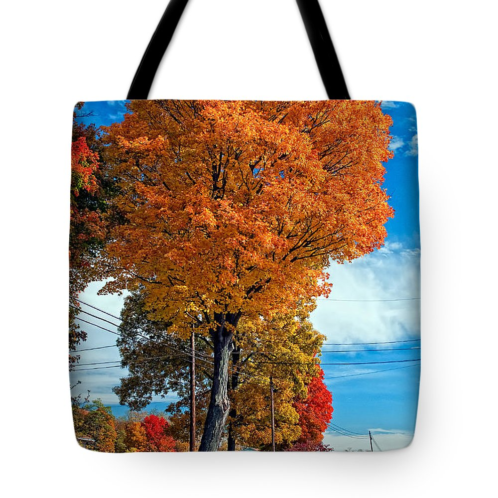 Pennsylvania Tote Bag featuring the photograph Battle Of The Maples 2 by Steve Harrington