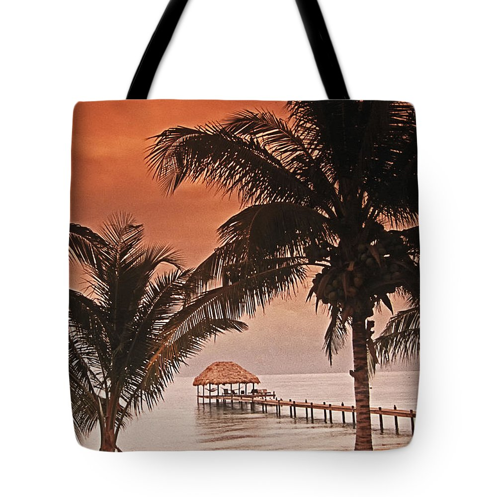 Beach Tote Bag featuring the photograph Beach Belize by Bruce Bain