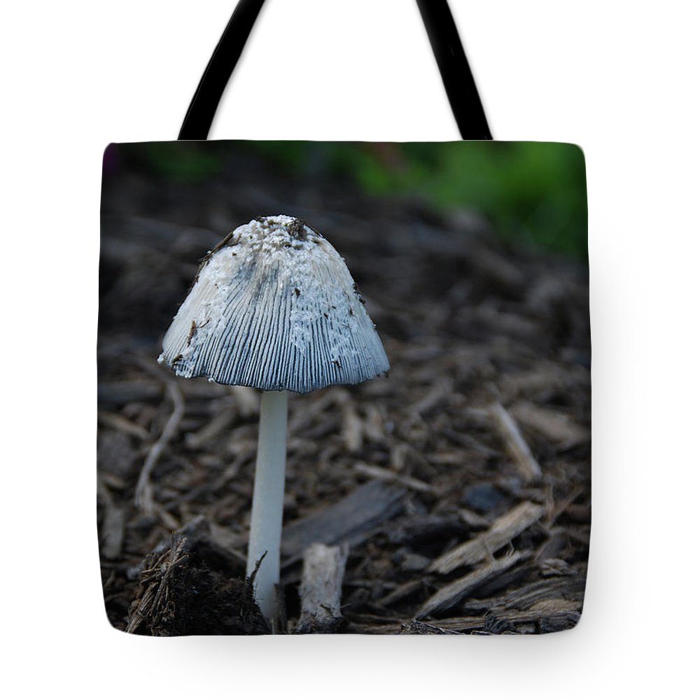 Garden Tote Bag featuring the photograph Beach Umbrella by Guy Whiteley
