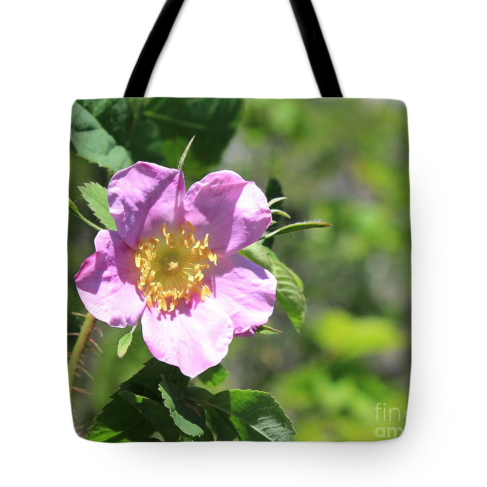 Roses Tote Bag featuring the photograph Beaming Wild Rose by Jim Sauchyn