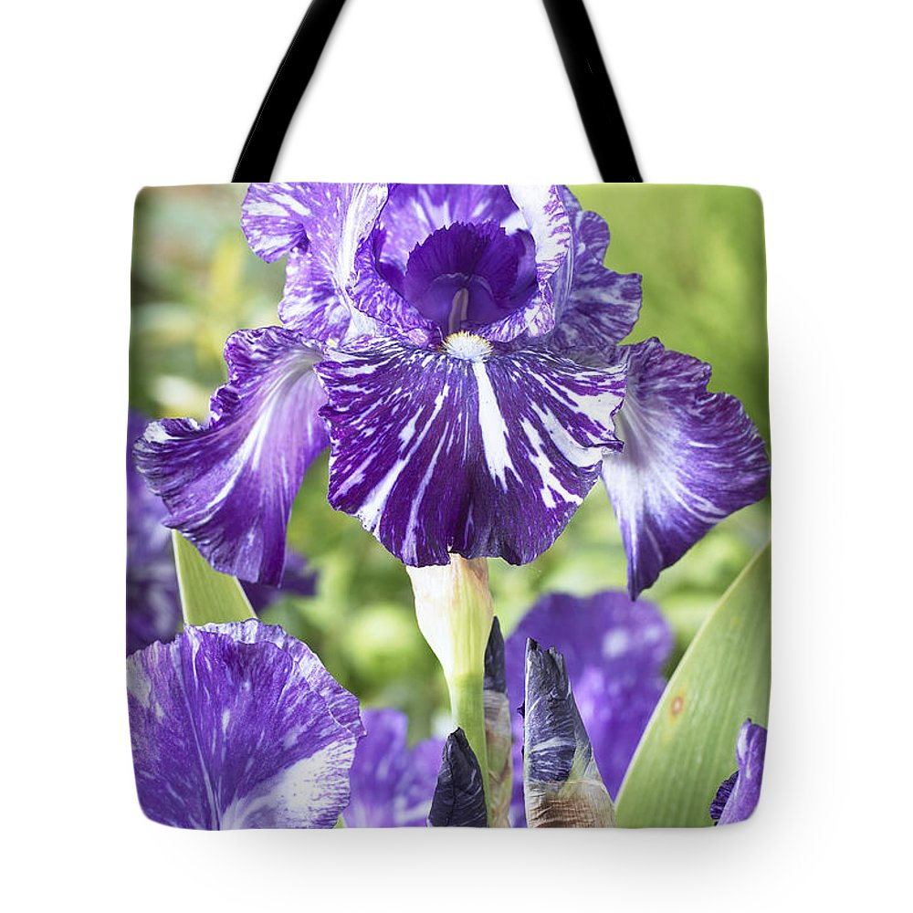 Vp Tote Bag featuring the photograph Bearded Iris Iris Germanica Batik by VisionsPictures