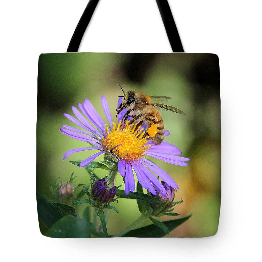 Honey Bee Tote Bag featuring the photograph Beautiful Bee by Doris Potter