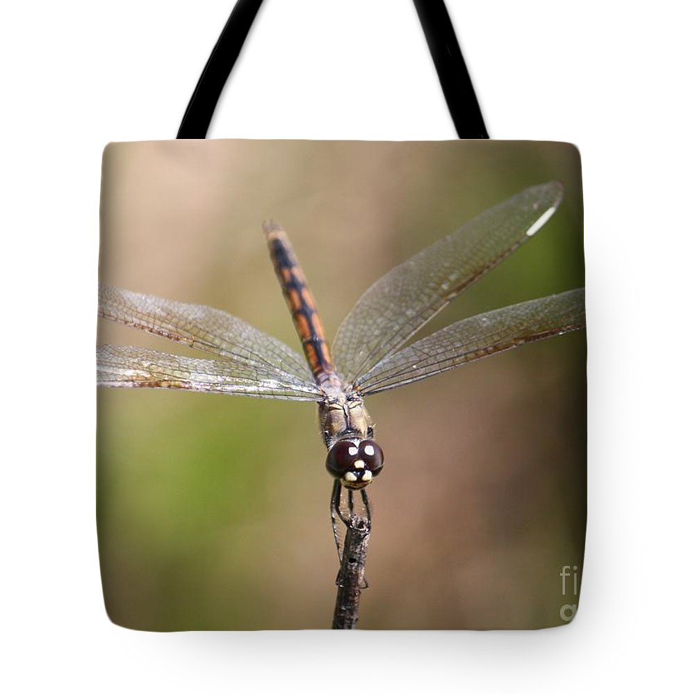 Dragonfly Tote Bag featuring the photograph Beautiful Brown Eyes by Carol Groenen