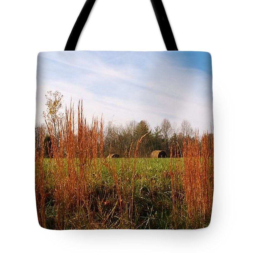 Hay Tote Bag featuring the photograph Beautiful Day by T Campbell