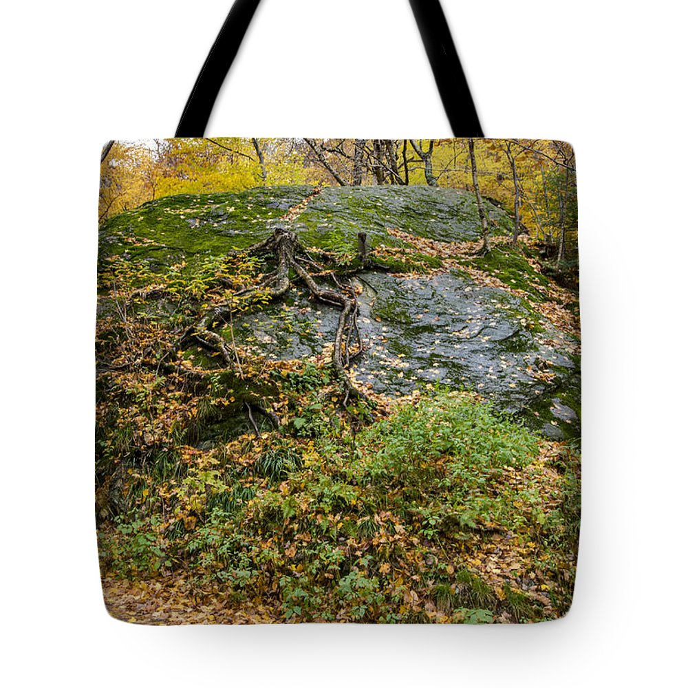 Vermont Tote Bag featuring the photograph Beautiful Vermont Scenery 14 by Paul Cannon