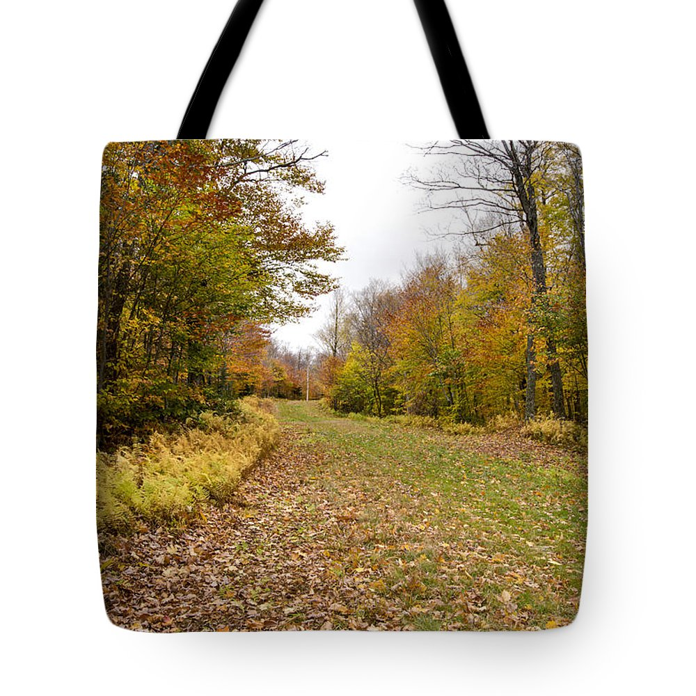 Vermont Tote Bag featuring the photograph Beautiful Vermont Scenery 25 by Paul Cannon
