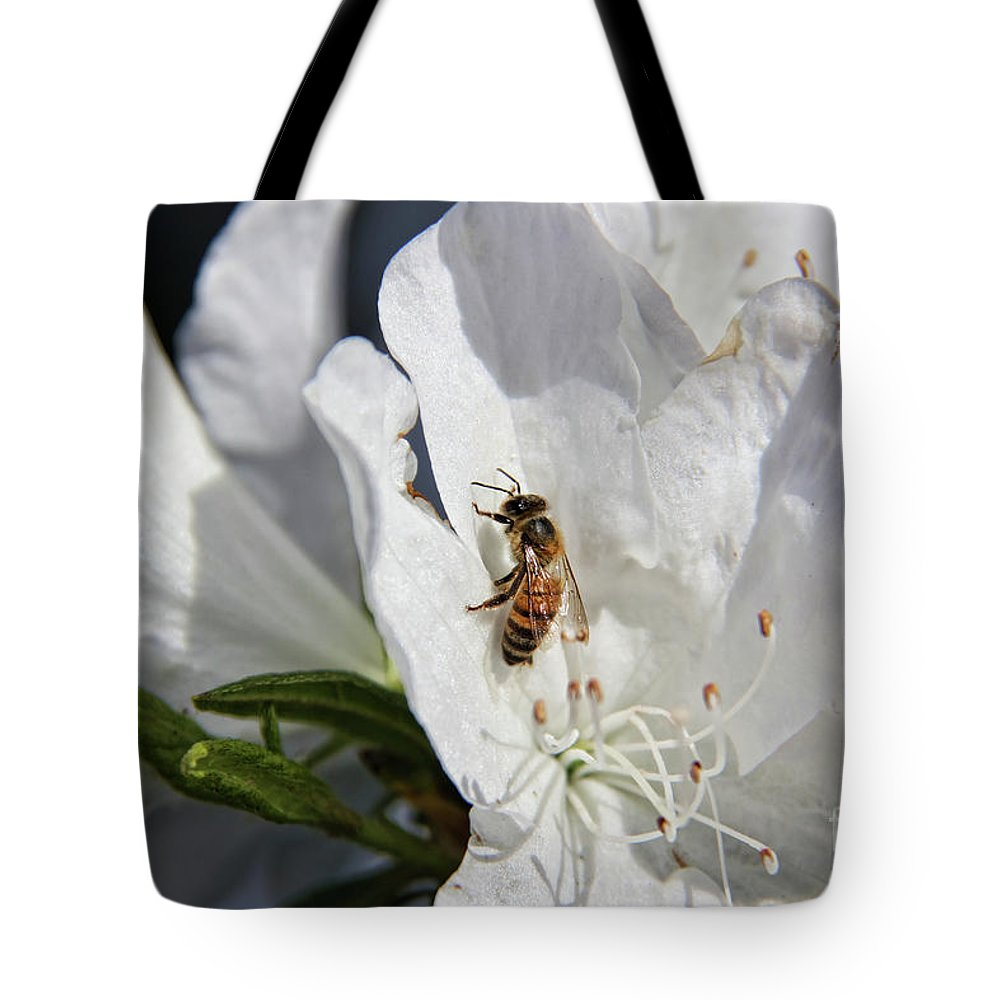Beauty And The Bee Tote Bag featuring the photograph Beauty And The Bee by Mariola Bitner