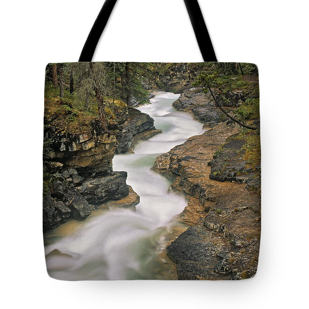 Light Tote Bag featuring the photograph Beauty Creek, Banff National Park by Darwin Wiggett