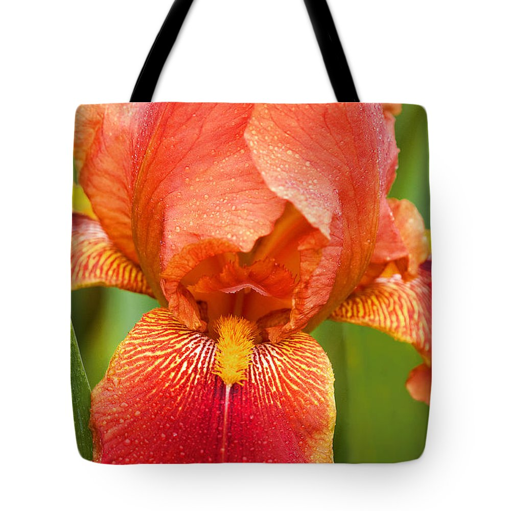 Iris Tote Bag featuring the photograph Beauty In The Rain by Regina Geoghan
