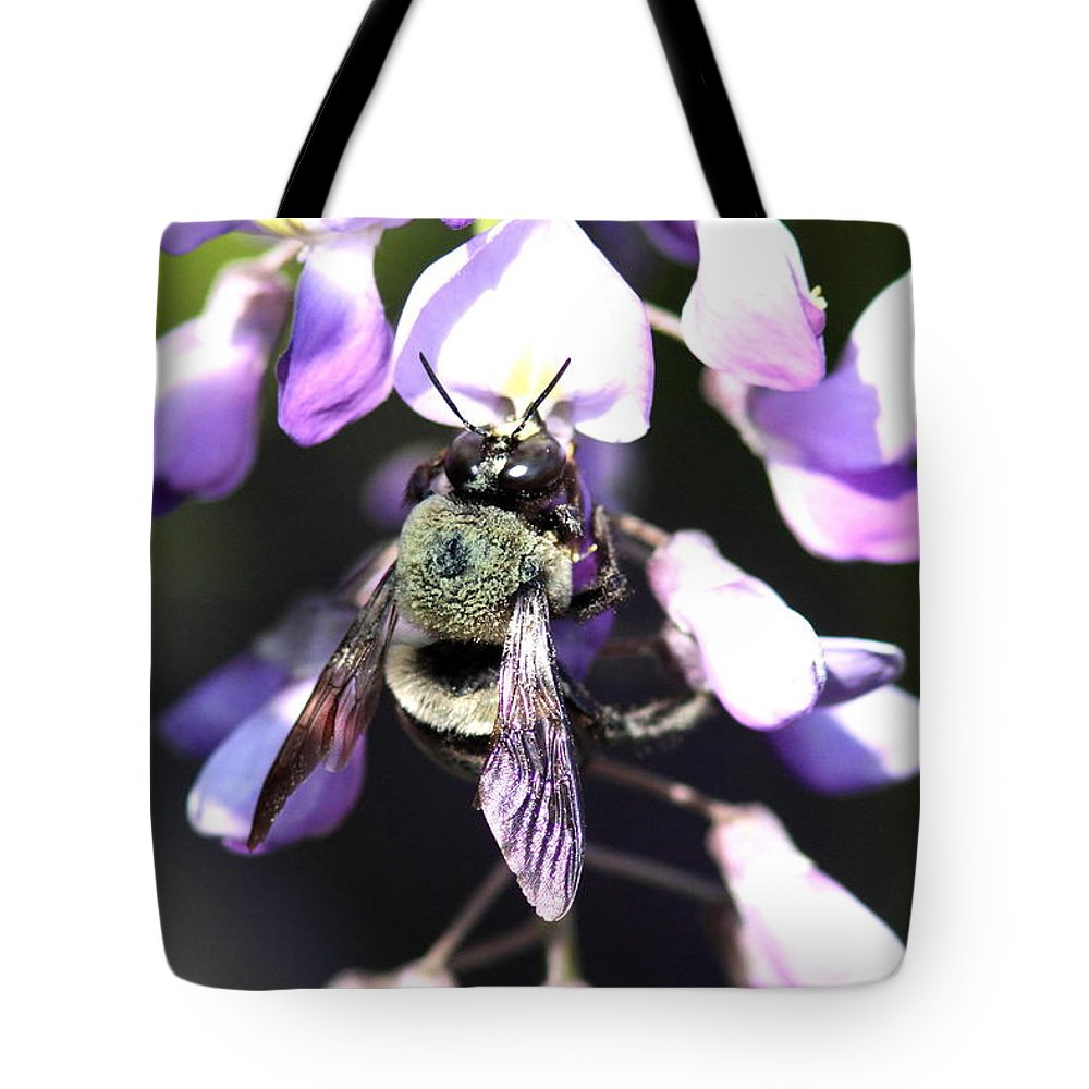Bumble Bee Tote Bag featuring the photograph Bee And Blooms - Card by Travis Truelove